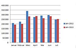 Neuzulassungen - Januar bis Juli 2013